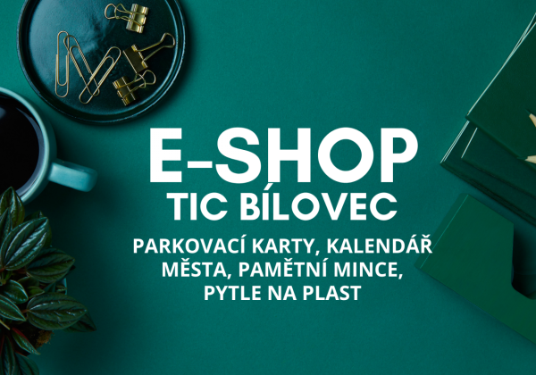 E-SHOP TIC